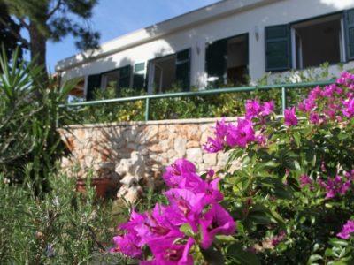 Villa Imara. Milna, Island of Brac TH