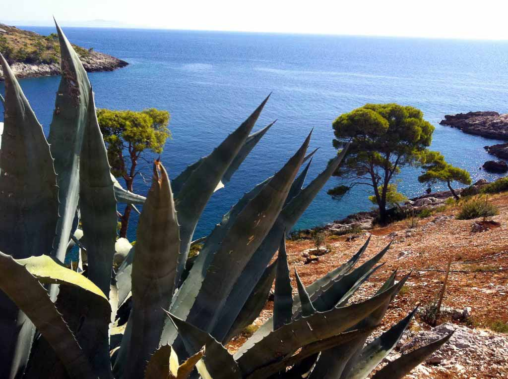 Dubovica Bay, Hvar Island (3)