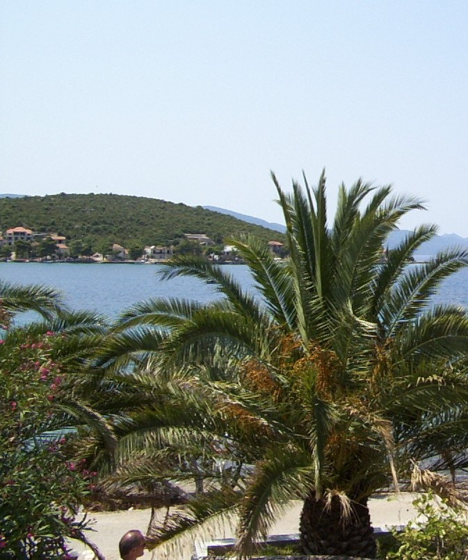 Apartments For Sale Zadar Croatia: DAY TRIP TO THE ISLAND OF KORCULA