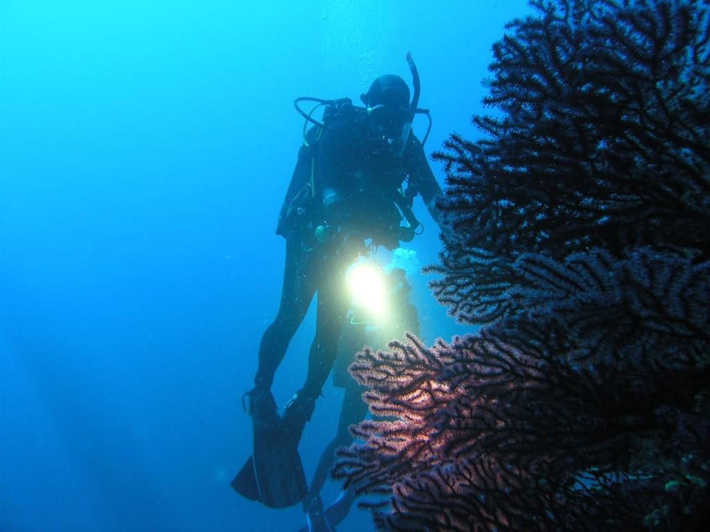 Diver in Croatia, Goran Ergovic, Croatian National Tourist Board