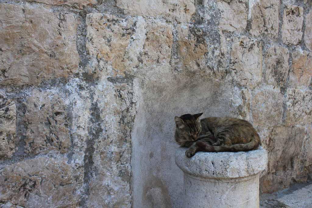 Dubrovnik Old Town (650)