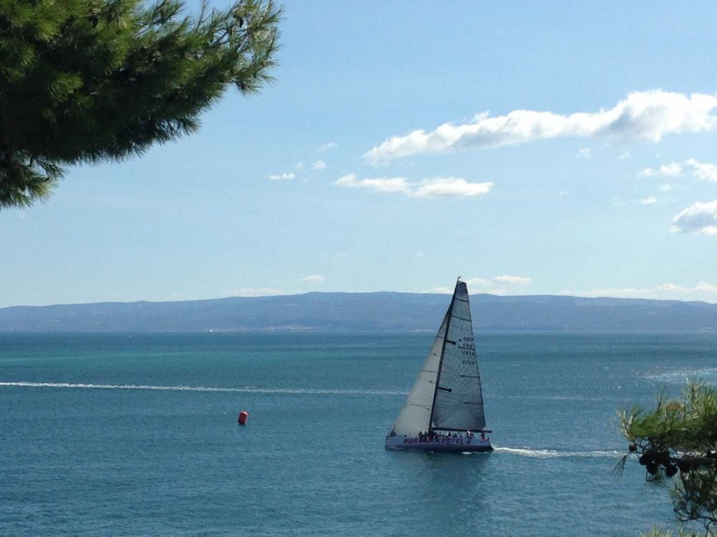 Sailing Regatta from Sustjepan Park, Split (7)