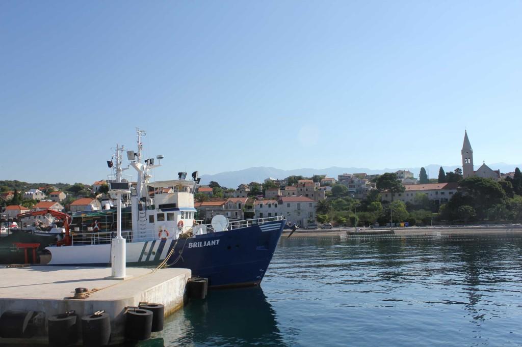 Sumartin Bay, Brac Island (23)