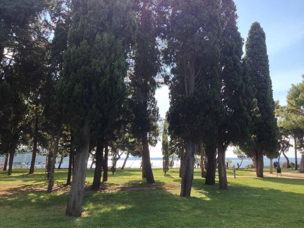 Sustjepan Park, Split (1)