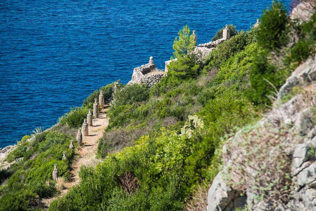 Trsteno, Dubrovnik Riviera (8)