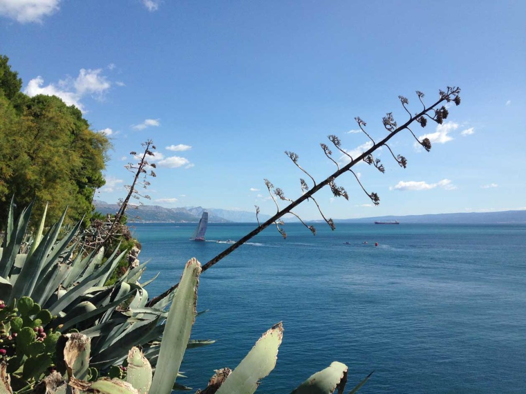 View from Sustjepan Park, Split (5)