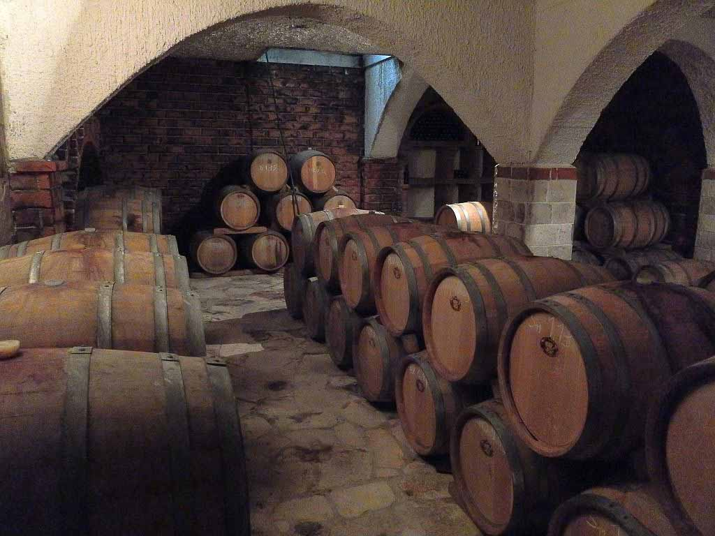 Winery, Peljesac Peninsula