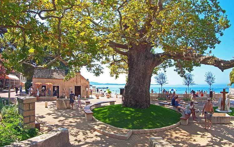 Hotel Astarea Photos, Mlini Bay, Dubrovnik Riviera (1)