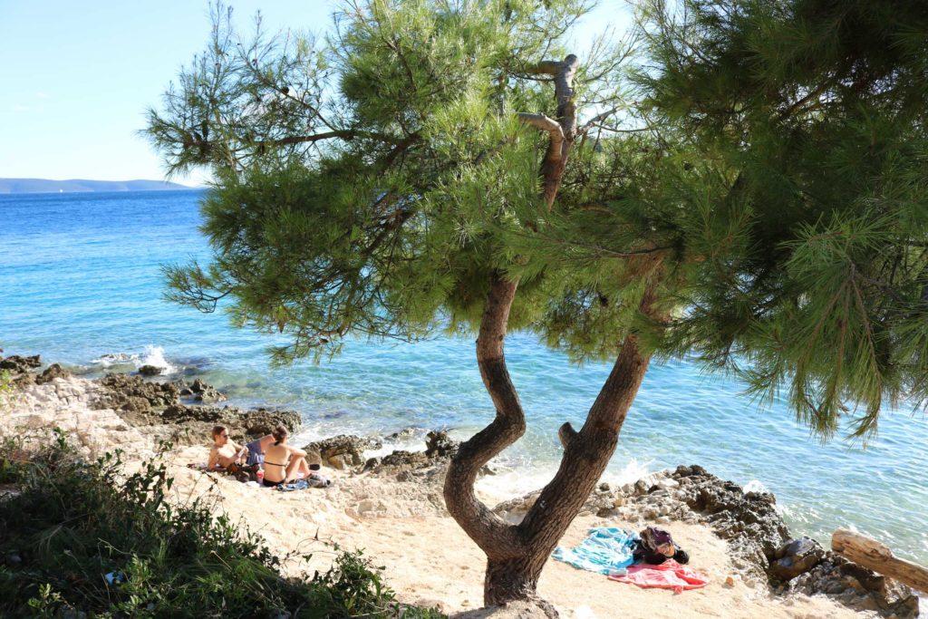 Restaurant Konoba Duga, Ciovo Island near Trogir, Split Riviera  (25)