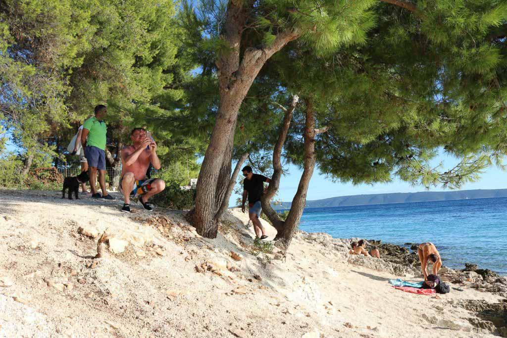 Restaurant Konoba Duga, Ciovo Island near Trogir, Split Riviera  (31)