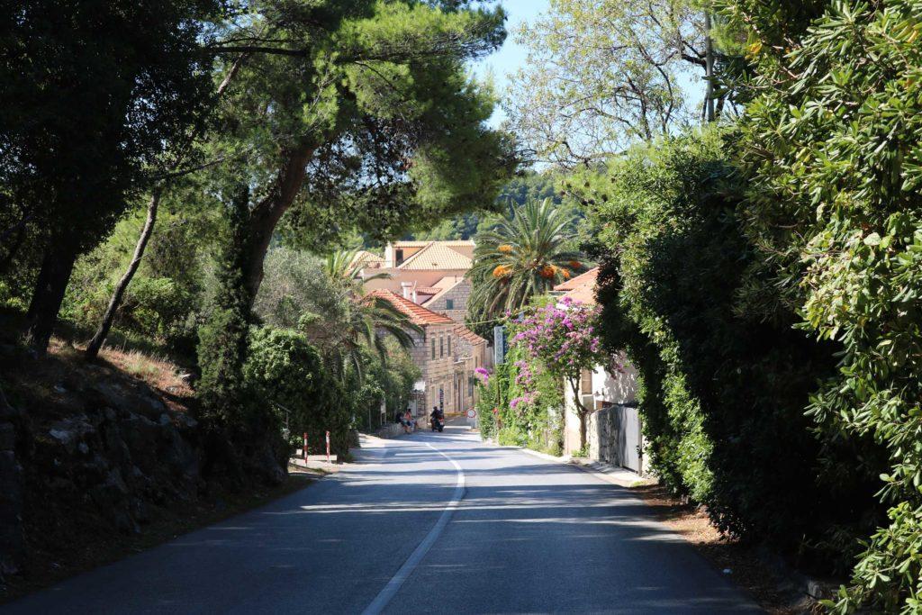 Villa Ante, Cavtat Bay, Dubrovnik Riviera (9)