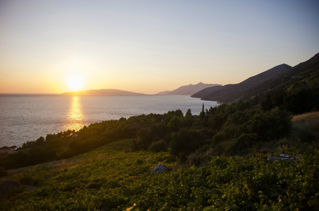 Wine Lovers Tour Peljesac Peninsula (1)