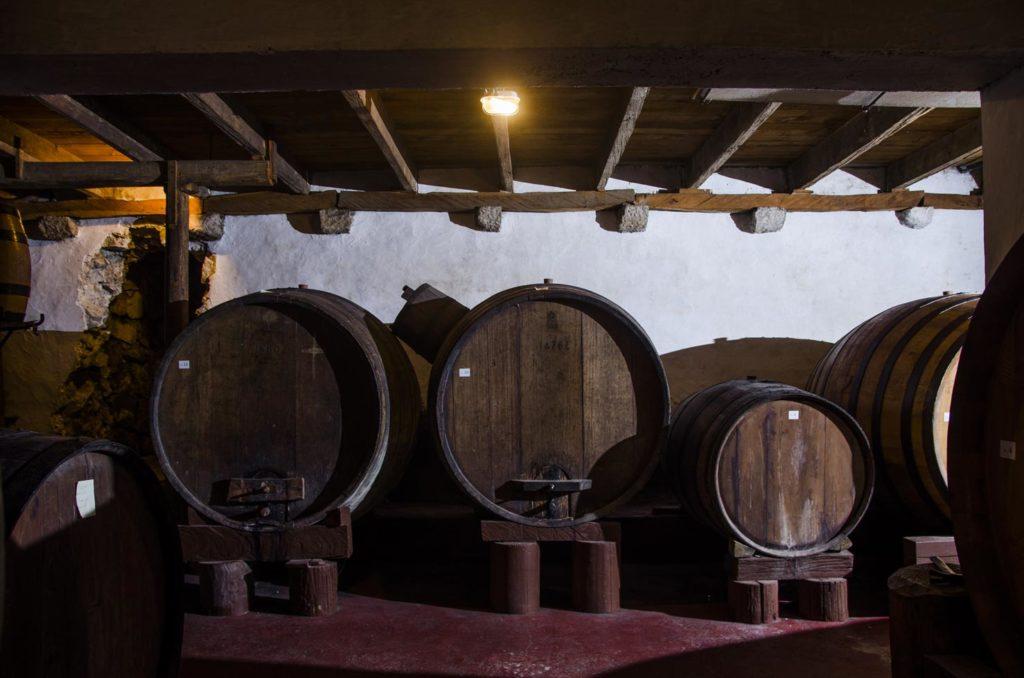 Best-of-Peljesac-Food-&-Wine-Day-Excursion-(6)