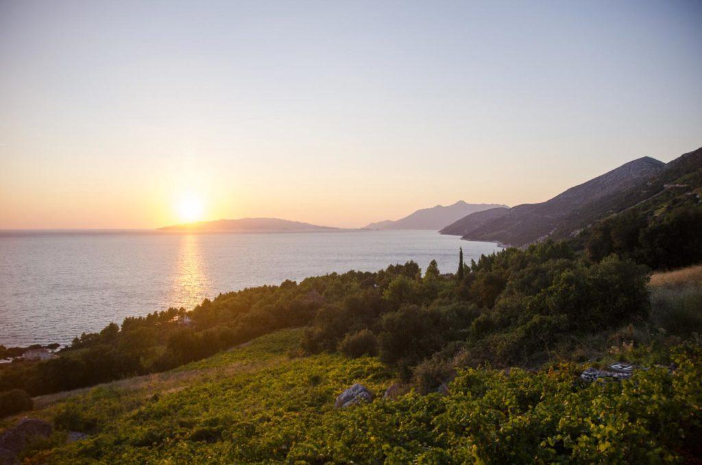 Best-of-Peljesac-Food-&-Wine-Day-Excursion-(9)