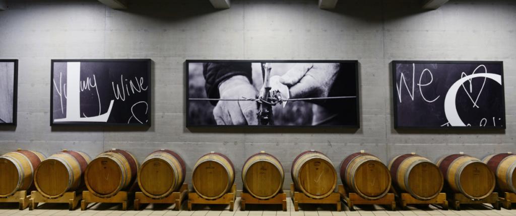 Winery Kozlovic