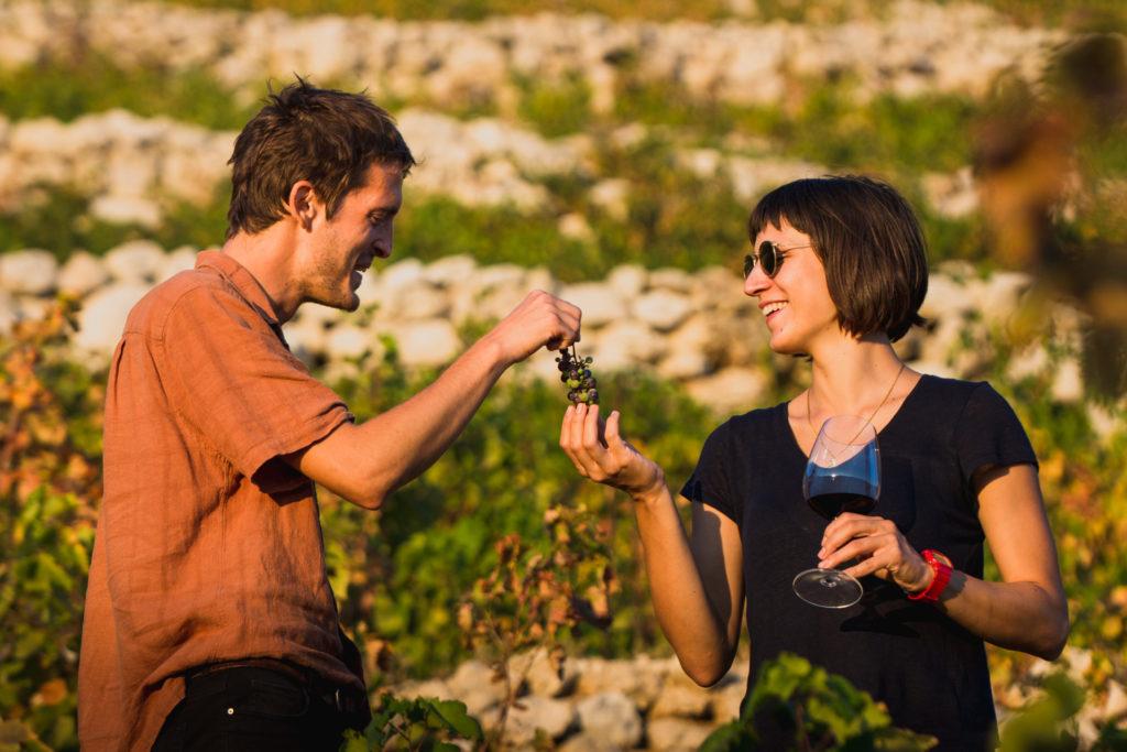 Peljesac Peninsula Wine Tasting (1)
