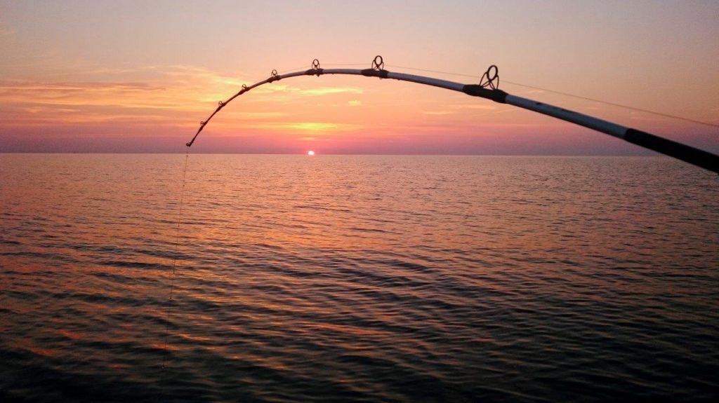 Extreme Fishing Bota - Dubrovnik (6)