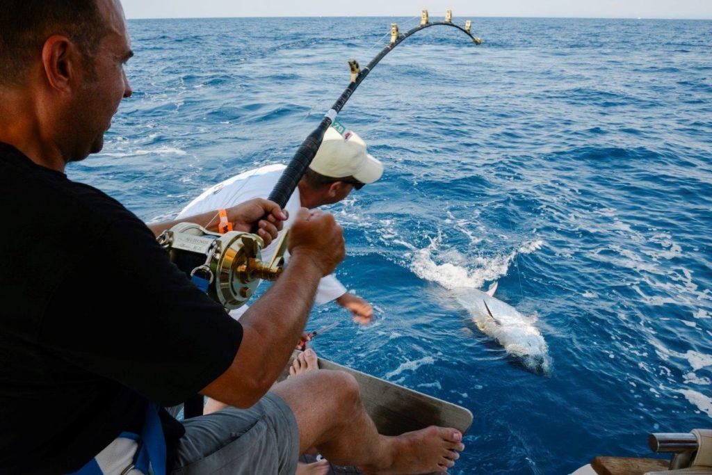 Extreme Fishing Bota - Dubrovnik (7)