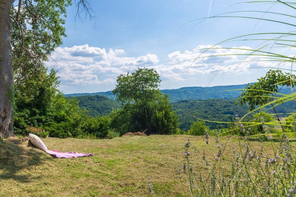 Villa Silvana, Near Rabac, Istria (11)
