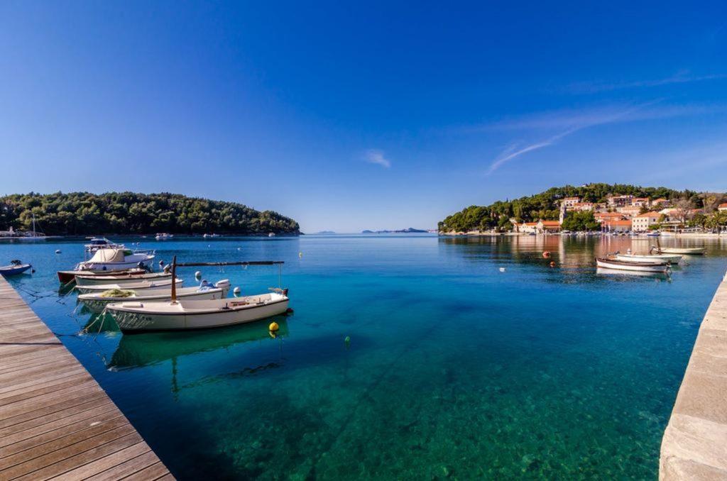 Villa Ante, Cavtat, Dubrovnik Riviera (16)