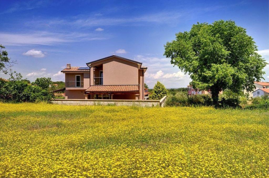 Villa Vincelo, Near Rovinj, Istria (5)