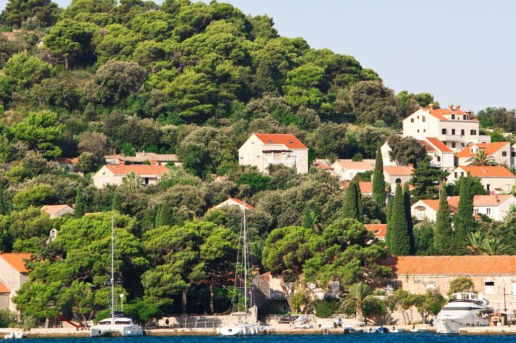 Villa Sophia, Zaton, Dubrovnik Riviera (2)