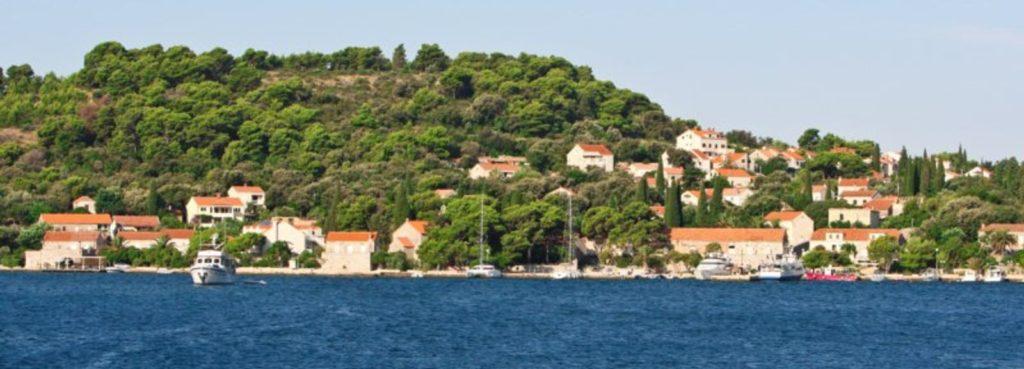 Villa Sophia, Zaton, Dubrovnik Riviera (3)